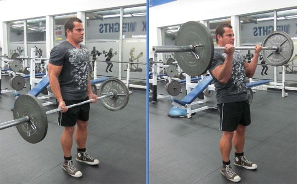 The most popular basic exercises in bodybuilding
