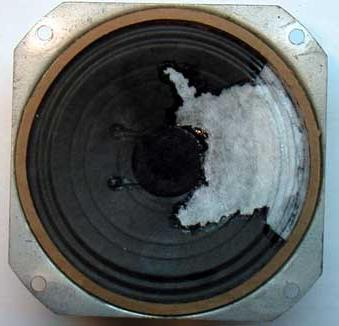 Self-repair of the speaker using available materials